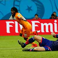 Ivory Coast's Gervinho celebrates after scoring a goal during their 2014 World Cup Group C soccer match at the Pernambuco arena in Recife